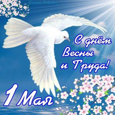Дорогие друзья, от всей души поздравляем вас сДнём весны и труда!